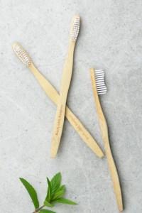 Brushes5_large